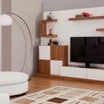 tv-unitesi-IMG_584577306988